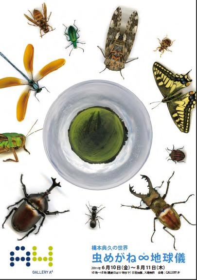 個展のお知らせ 橋本典久の世界 虫めがね∞(と)地球儀